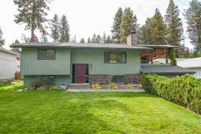 Spokane Single Family Home For Sale: 4604 E Big Springs Rd