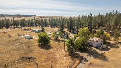 Spokane, Spokane Valley Single Family Home For Sale: 9011 W Newkirk Rd