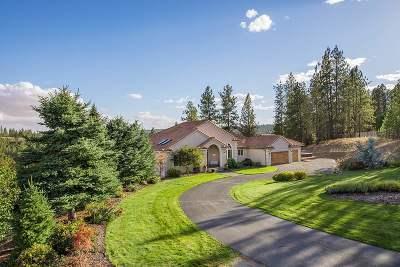 Spokane Single Family Home For Sale: 11921 S Baltimore Rd