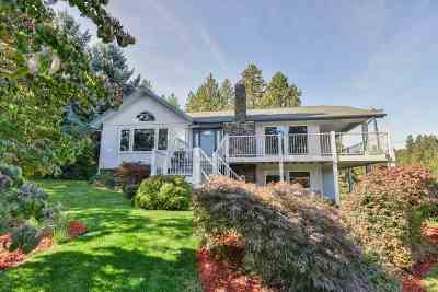 Single Family Home For Sale: 814 S McKinzie Rd