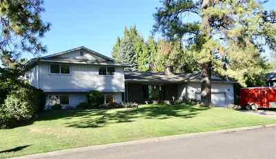 Spokane Single Family Home For Sale: 12107 S Player Dr