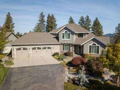 Spokane Single Family Home For Sale: 5807 S Windstar St
