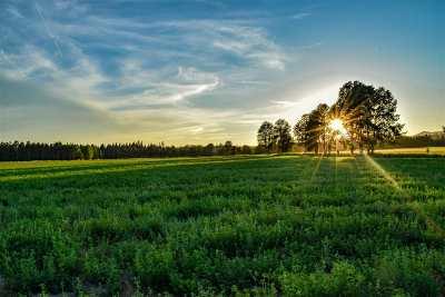 Deer Park Residential Lots & Land For Sale: Nka W Mason Rd