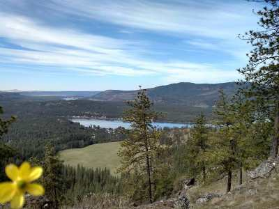 Residential Lots & Land New: Xx Saddle Mountain Way #Lot 28