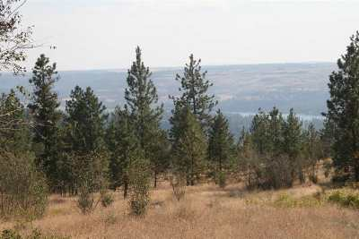 Residential Lots & Land For Sale: Xx Saddle Mountain Way #Lot 29