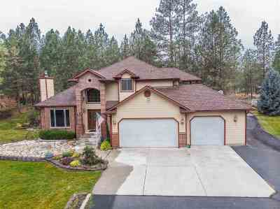 Nine Mile Falls Single Family Home For Sale: 15211 N Pheasant Rd