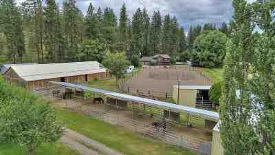 Single Family Home For Sale: 3602 N Idaho Rd
