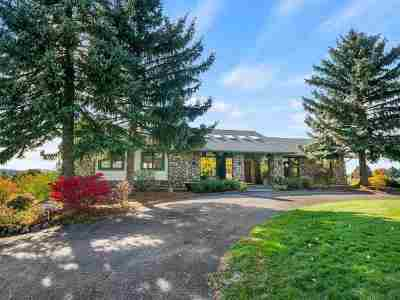 Otis Orchards Single Family Home For Sale: 3307 N Molter Rd