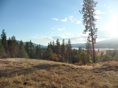 Kettle Falls Residential Lots & Land For Sale: Lot 203 Old Kettle Rd