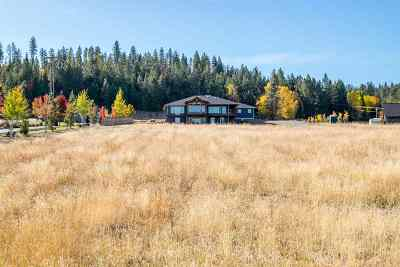 Coeur D Alene Single Family Home Ctg-Other: 4874 W Foothill Dr