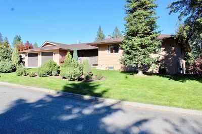 Spokane Valley Single Family Home New: 3719 S Ridgeview Dr