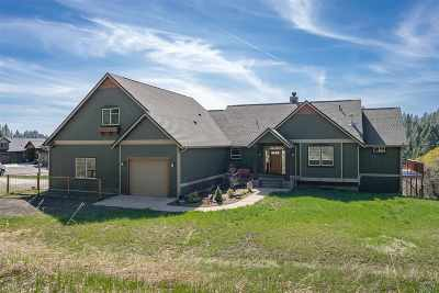 Spokane, Spokane Valley Single Family Home New: 7814 S Ellis Rd