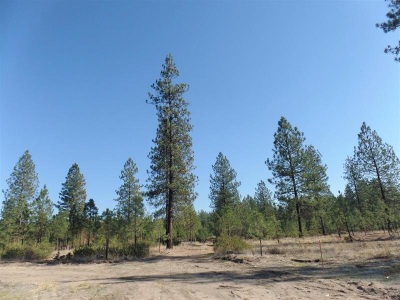 Kettle Falls Residential Lots & Land For Sale: Lot 113 Old Kettle Rd