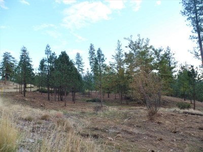 Kettle Falls Residential Lots & Land For Sale: Lot 202 Old Kettle Rd