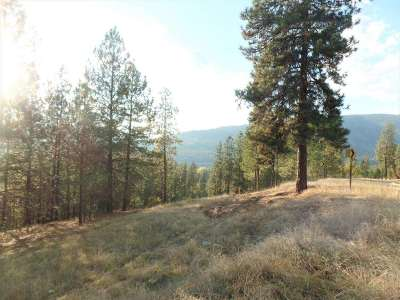 Kettle Falls Residential Lots & Land For Sale: Lot 201 Old Kettle Rd
