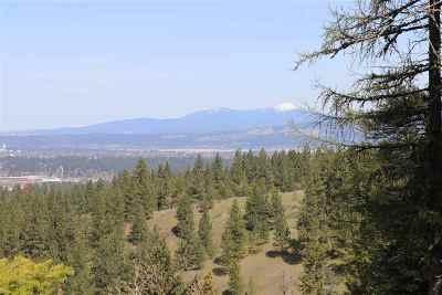 Spokane Residential Lots & Land For Sale: 6700 S Wilcox Ln
