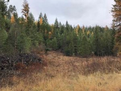Chewelah Residential Lots & Land For Sale: Lot 4 Glasser Hill Rd