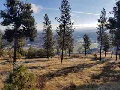 Spokane Residential Lots & Land For Sale: 11615 S Elk Run Lane