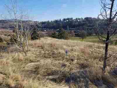 Spokane Residential Lots & Land For Sale: 11901 S Fairway Ridge
