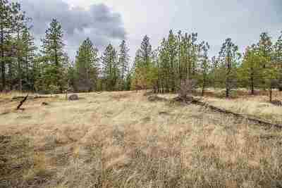 Spokane Residential Lots & Land Ctg-Inspection: 3813 Appx S San Diego Rd