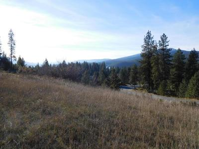Kettle Falls Residential Lots & Land For Sale: 1344 Lot 3 Pine Crest Way