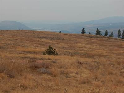 Davenport Residential Lots & Land For Sale: 001 No Name Trl