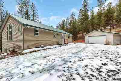 spokane Single Family Home For Sale: 15208 W Coulee Hite Rd