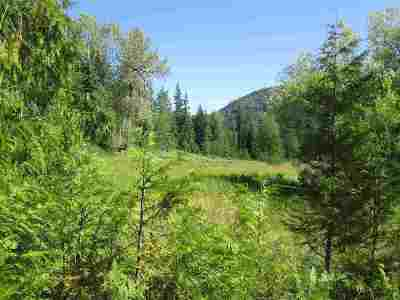 Ione Residential Lots & Land For Sale: 397802 Highway 20