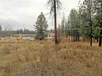 Nine Mile Falls Residential Lots & Land For Sale: 6050 N Sunview Way #Lot B