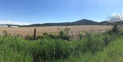Residential Lots & Land For Sale: 50xxx W Casberg Burroughs Rd #Lot 2