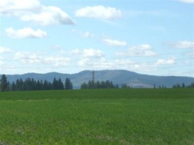 spokane Residential Lots & Land For Sale: 11222 E Bigelow Gulch Rd