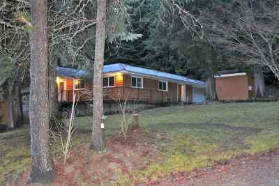 Metaline Single Family Home For Sale: 431 Boundary Rd