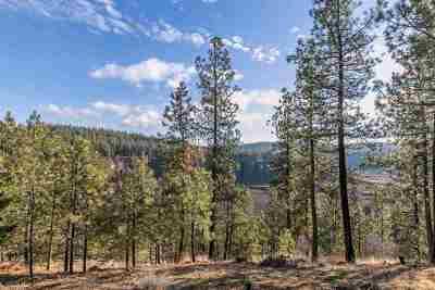 spokane Residential Lots & Land For Sale: 2410 S Hangman Ln