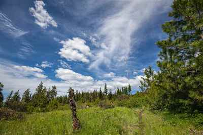 Residential Lots & Land For Sale: E Jamieson Rd