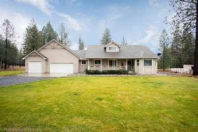 Nine Mile Falls Single Family Home New: 5881 Liberty Way