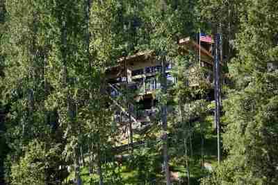 Single Family Home For Sale: N Deer Lake Rd
