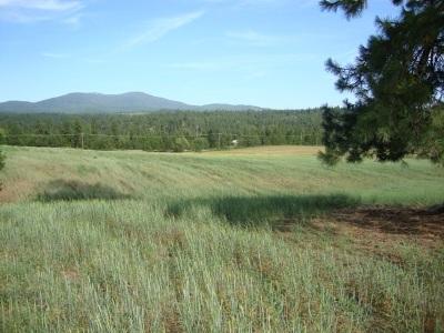 Elk Residential Lots & Land For Sale: Elk Chattaroy Rd