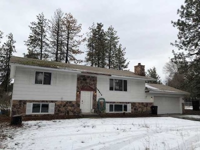 Nine Mile Falls Single Family Home Ctg-Inspection: 16615 N Suncrest Dr