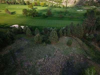 Kootenai County, Spokane County Residential Lots & Land For Sale: 1817 E Sunburst Ln