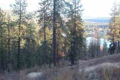 Nine Mile Falls Residential Lots & Land For Sale: 163xx N Lakeside Ln