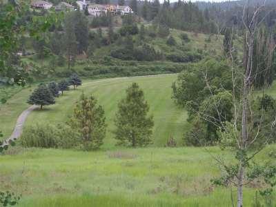 Spokane Residential Lots & Land For Sale: 11707 S Fairway Ridge Ln