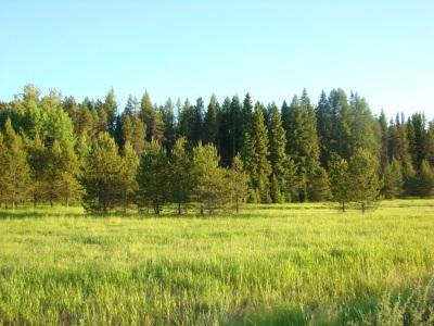 Oldtown Residential Lots & Land For Sale: Lot D1 Solar Rd