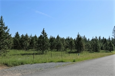 Oldtown Residential Lots & Land For Sale: 159 James Way