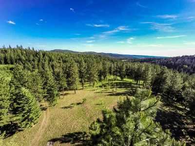 Mead Residential Lots & Land For Sale: 23300 N Mt Spokane Park Dr