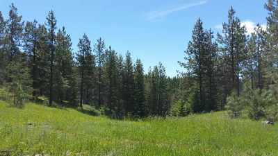Mead Residential Lots & Land For Sale: 23100 N Mt Spokane Park Dr