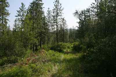Residential Lots & Land For Sale: Rocky Top Way #Lot D