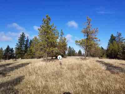 Spokane Residential Lots & Land New: 13420 S Lookout Lane
