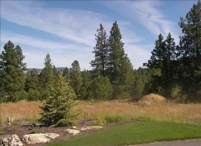 Spokane Residential Lots & Land New: 13121 S Upper Meadow Ln