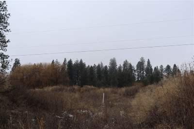 Spokane Residential Lots & Land New: 4717 W South Oval Rd