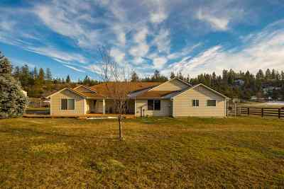 Single Family Home New: 28016 N Elk Chattaroy Rd